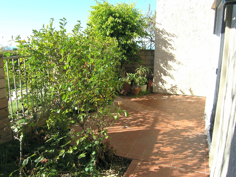 patio1_med